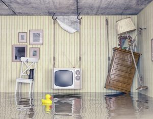 water damage restoration santa rosa, water damage cleanup santa rosa, water damage santa rosa