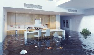 water damage cleanup san rafael, water damage san rafael, water damage mitigation san rafael