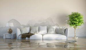 water damage cleanup san rafael, water damage san rafael, water damage repair san rafael